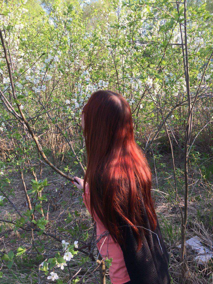 Блеск волос после фито-маски Планета Органика