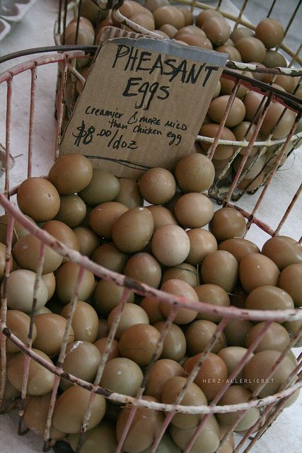 Pheasant Eggs-- been looking into raising pheasants, would be awesome to get these eggs with our daily chicken eggs! Gorgeous!