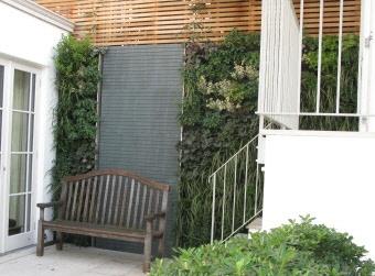 Vertical Garden Ideas Australia 97 best vertical garden images on pinterest | vertical gardens