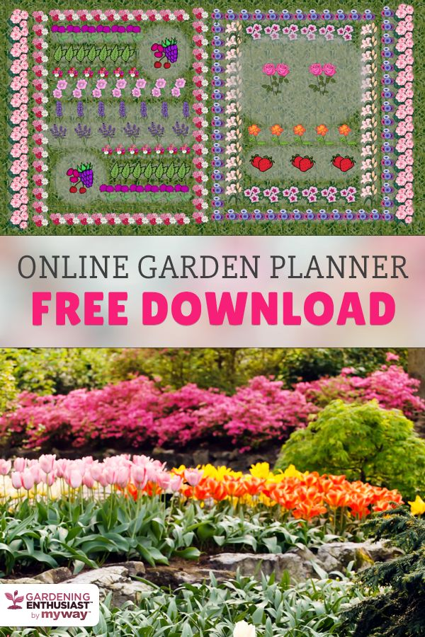 25+ Best Ideas About Flower Garden Planner On Pinterest | Garden