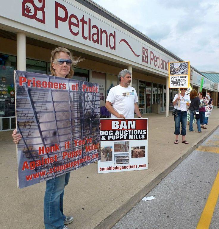 peaceful rally against Bethel Road (Columbus) Petland. Thanks again to all those attending, including advocates representing Buckeyes For Canines, Central Ohio Dog Rescue League, HSUS, Ohio SPCA, Ohio Voters for Companion Animals and Rescue Me Ohio.