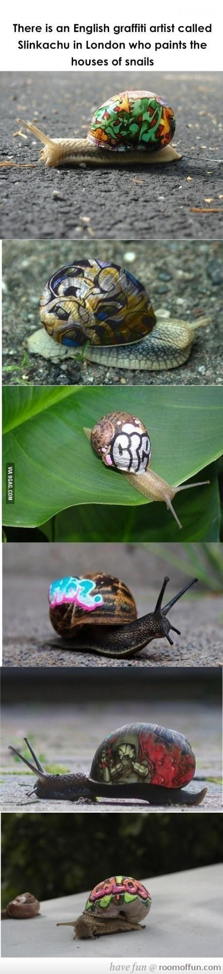 Snail Graffiti - There is a graffiti artist from London that paints on the shells of snails! | re-pinned by http://www.wfpblogs.com/author/rachelwfp/