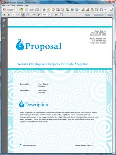 Small Business Web Site Project Proposal - The Small Project Sample is an example of the use of the Proposal Kit documents for a typical small business web site project. Create your own custom proposal using the full version of this completed sample as a guide with any Proposal Pack. Hundreds of visual designs to pick from or brand with your own logo and colors. Available only from ProposalKit.com (come over, see this sample and Like our Facebook page to get a 20% discount)