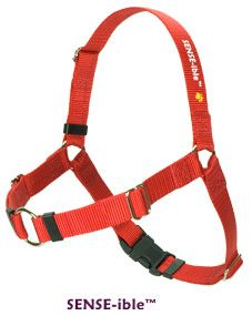 SENSE-ible Dog Harness, one of the best harnesses on the market! Great to help with your pulling dog!