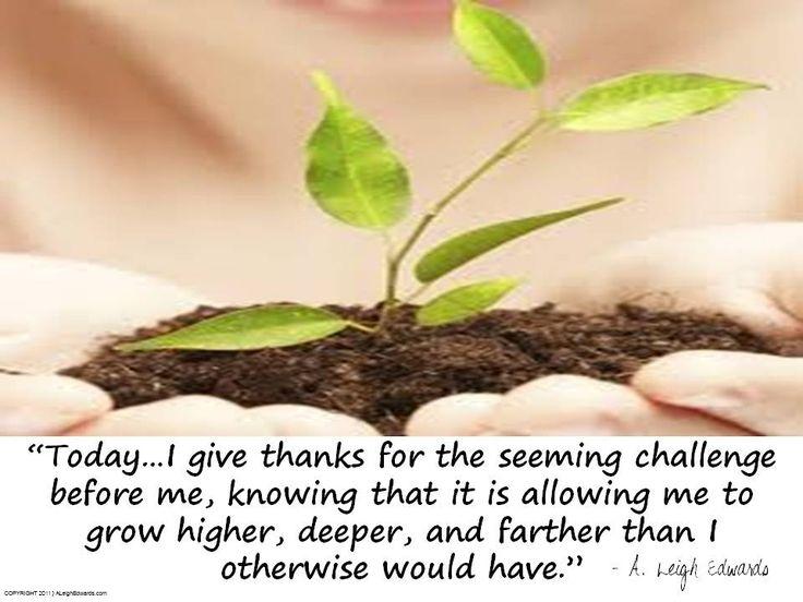 I Give Thanks...    Affirmation  www.DivineGoddessCoaching.com/blog