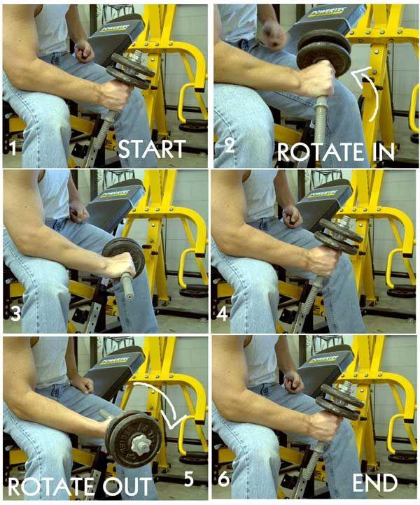 forearm workout machine