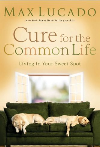 e-Book Sale: Cure for the Common Life {by Max Lucado} ~ $1.99! #kindle #books