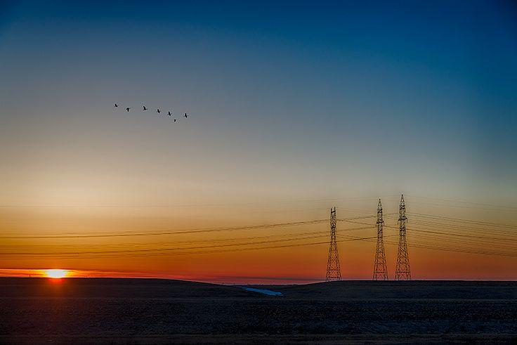Electric Sunrise by Nebojsa Novakovic on 500px