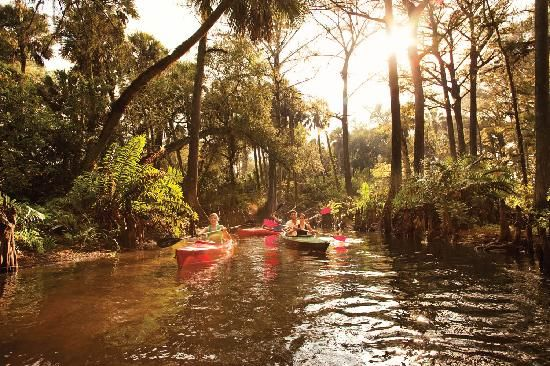 51 best things i love about florida images on pinterest for Fish creek florida