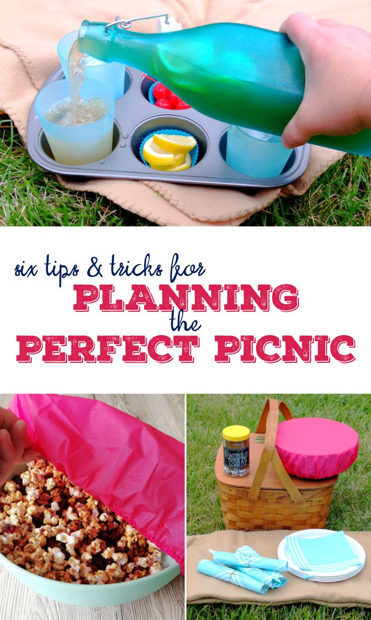 6 tips and tricks for planning the perfect picnic | picnic hacks