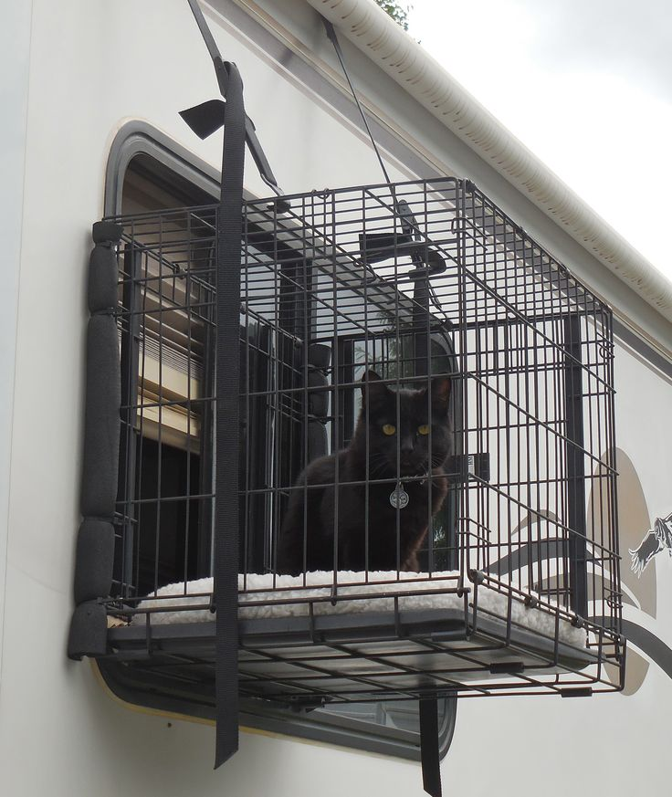 A very inventive adaptation of a regular dog or cat travel crate to create an outdoor space for the RV family cat!