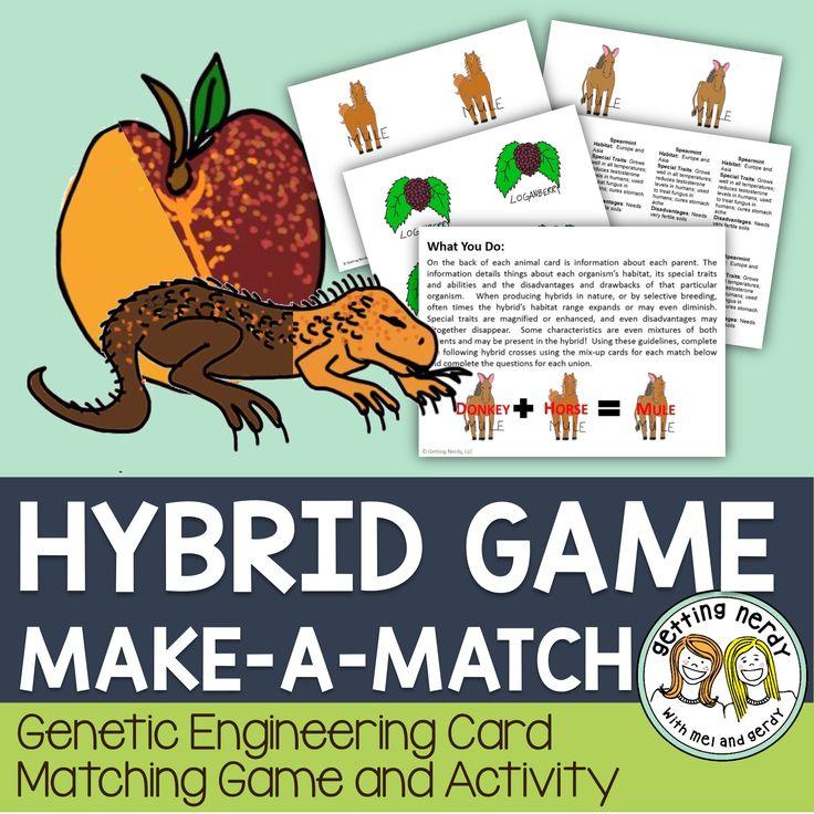 Hybrid Organisms Activity   Genetics activities, Biology ...
