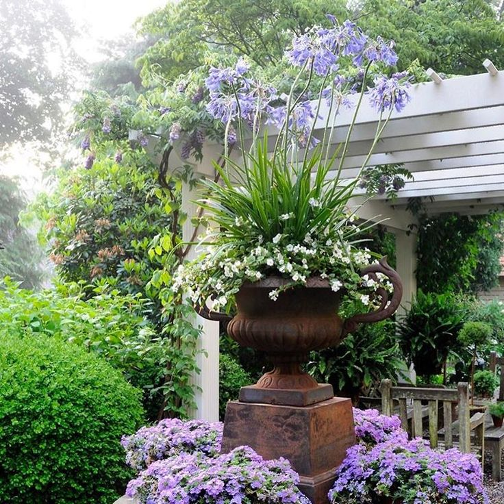 "Gardens at First Light: ""Ahh, the romance of a hazy morning. Garden perfection Rosewood gardens.…"""