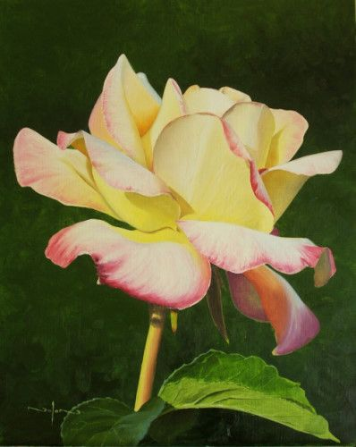 How to paint realistic flowers. 2 part course. both classes 2 hour long, recorded live. Go to part one by clicking this picture, part 2 click this link http://www.paintbasket.com/paintbaskettv/online-art-class.php?class=realistic-flower-painting-secrets-pt2-231. Each class replay can be purchased for $14. Learn to paint this rose in either oils or acrylics. art, paint, oil, video lesson, acrylic, flower