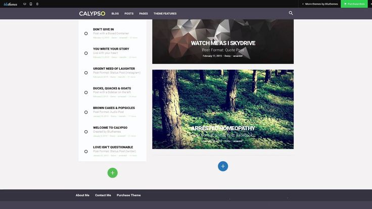 Calypso -  Material Design WordPress Theme