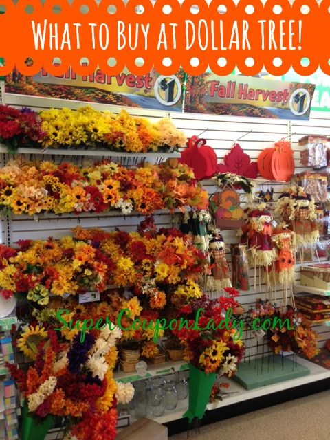 """""""Love buying fall decor and decorating items at Dollar Tree! See my full list! http://www.supercouponlady.com/what-to-buy-at-the-dollar-tree/"""""""