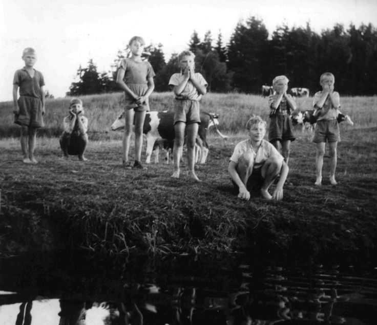 'Aventures dans la Baie d'Or' (1955); regia: Břetislav Pojar. Titolo originale: 'Dobrodružství na Zlaté zátoce'; titolo tedesco: 'Abenteuer in der goldenen Bucht'