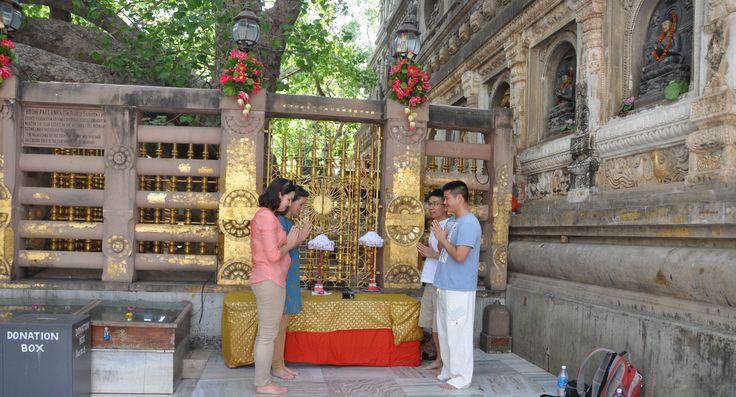 bodhi ağacı - Gautama Buddha Bodhi ağacının altında aydınlanmaya bulduk söyleniyor Bodhgaya, ziyaret etmek için bir şansı vardı.