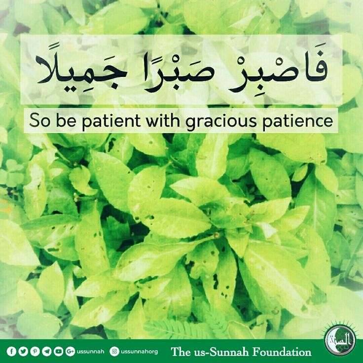 Allah ﷻ says : ﴿ فَاصْبِرْ صَبْرًا جَمِيلًا ﴾   ❝So be patient with gracious patience.❞ — Surat Al-Ma'arij 70:5  It means : Be patient without despairing. (Tafsir Al-Jalalain)