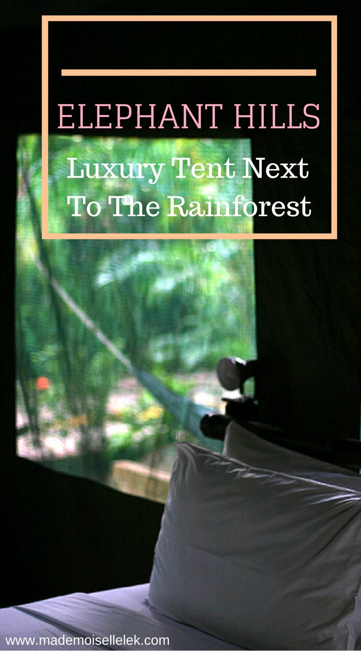 If you stay at Elephant Hills in Thailand, experience the unforgettable encounter with protected elephants! http://mademoisellelek.com/2013/07/29/elephant-hills-thailand-luxury-tent-next-to-the-rainforest/