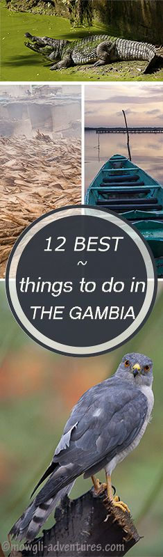 Best things to do in The Gambia  @michaelOXOXO @JonXOXOXO @emmaruthXOXO  #MAGICALTHEGAMBIA