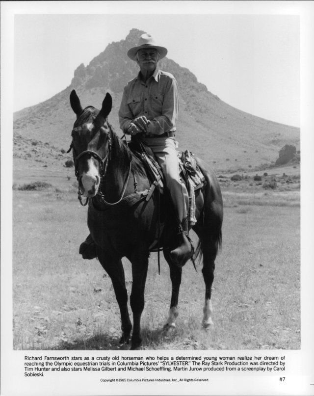 Still of Richard Farnsworth in Sylvester
