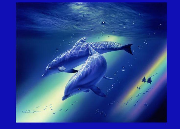 naturaleza marina - Buscar con Google