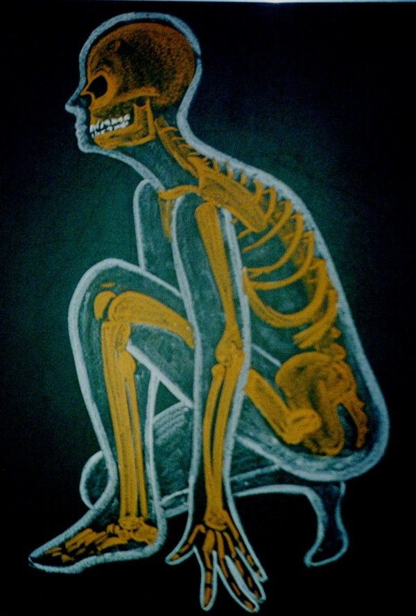 Waldorf ~ 8th grade ~ Anatomy ~ Skeleton ~ chalkboard drawing