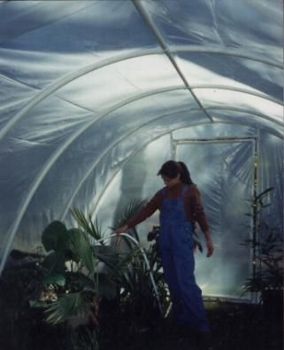 FREE Plans for an arched PVC pipe GREENHOUSE.