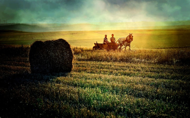 Countryside kids by fotografescu