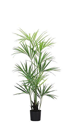 Kentia Palm Elegance Luxe - Artificiale - H.180 cm Verdevip https://www.amazon.it/dp/B00IA37LBU/ref=cm_sw_r_pi_dp_x_TCnJybSWV6D94