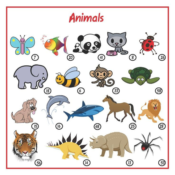 plenty of animals to choose from