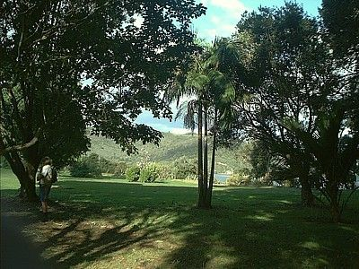 Lovely park in Whitianga, New Zealand