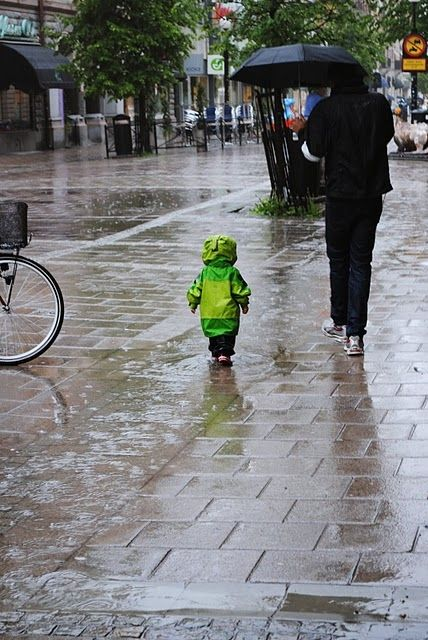 Notice the little one is walking through the deepest of the water .... this is just too heartwarming not to share with y'all!