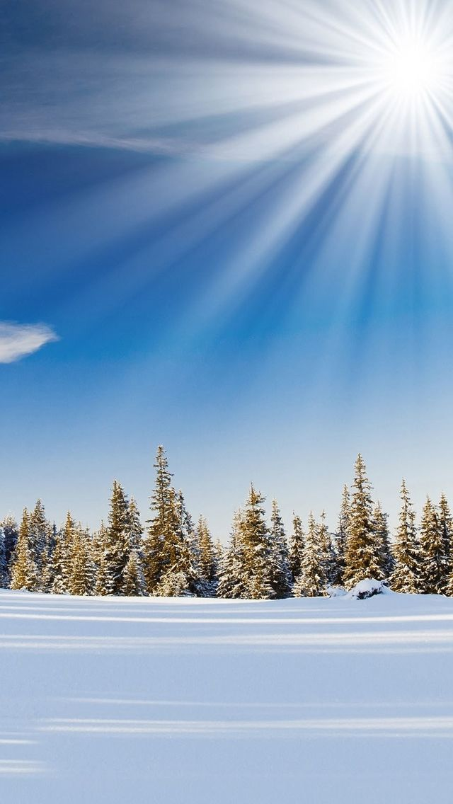 23 best winter phone wallpaper images on pinterest - Free winter wallpaper for phone ...