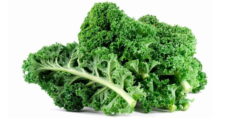 Kale is actually a form of cabbage that evaded domestication, but do not underestimate this plant, as it has a long list of impressive health benefits. http://articles.mercola.com/sites/articles/archive/2013/11/06/kale-benefits.aspx