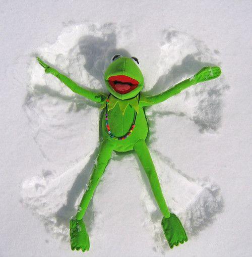Best 25 Muppet Meme Ideas On Pinterest: 17 Best Ideas About Kermit On Pinterest