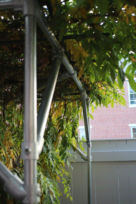 Wisteria Support Trellis Projects To Try Pinterest