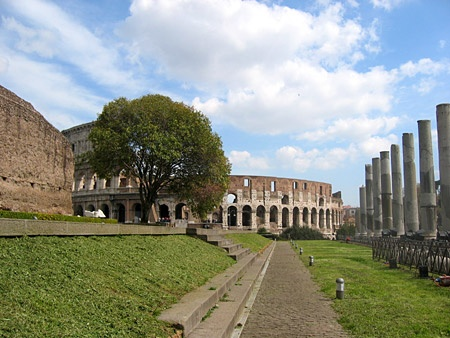Arte e Ambiente. A Roma. Vicino il Colosseo. #Roma #Colosseo
