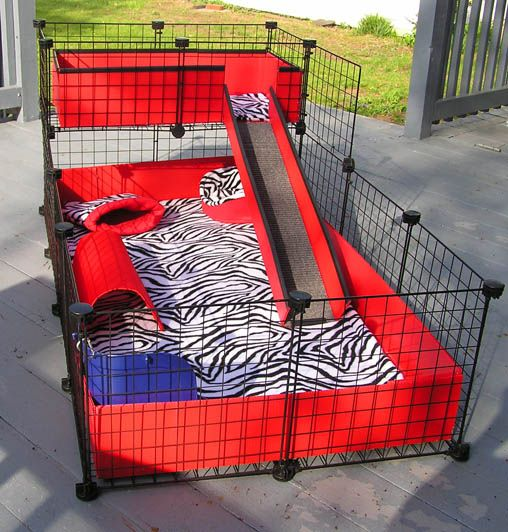 15 best images about c c cages on pinterest front for Making a c c cage