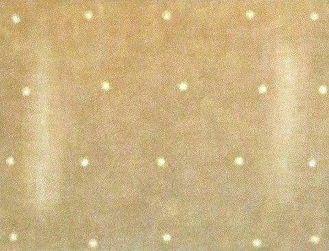 Svein Bolling <em>Pulsar N1 01</em><br />tempera, 130x170 cm
