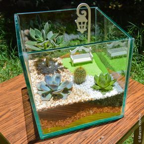 Terrário | Jardins em Miniatura