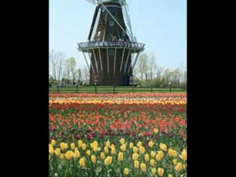 Welcome to Holland - YouTube