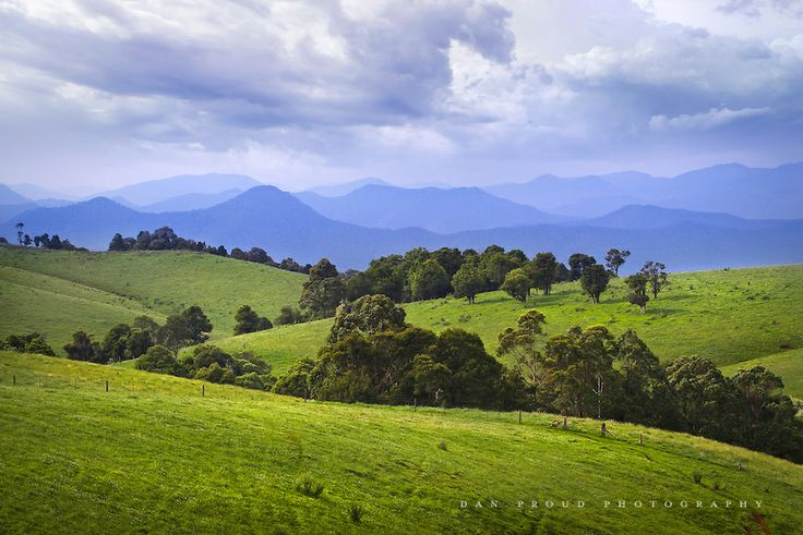 Beautiful scenery near Armidale and Dorrigo in NSW