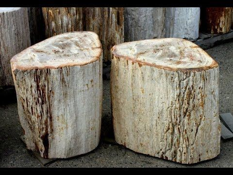 IndoGemstone Petrified Wood Outdoor Log Furniture