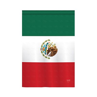 "TwoGroupFlagCo Mexico Country 2-Sided Vertical Flag Size: 40"" H x 28"" W"