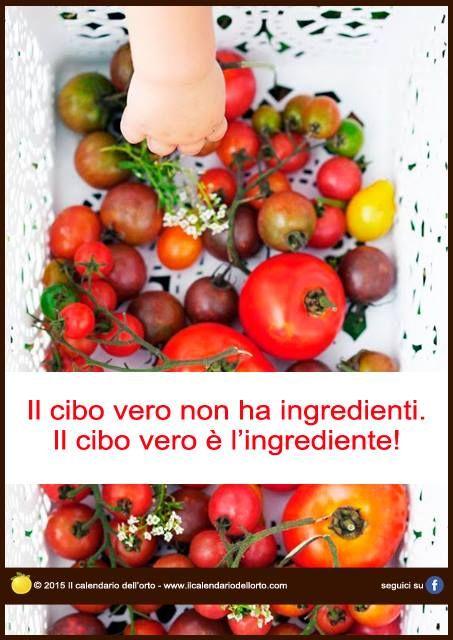 Il cibo vero non ha ingredienti. Il cibo vero è l'ingrediente!