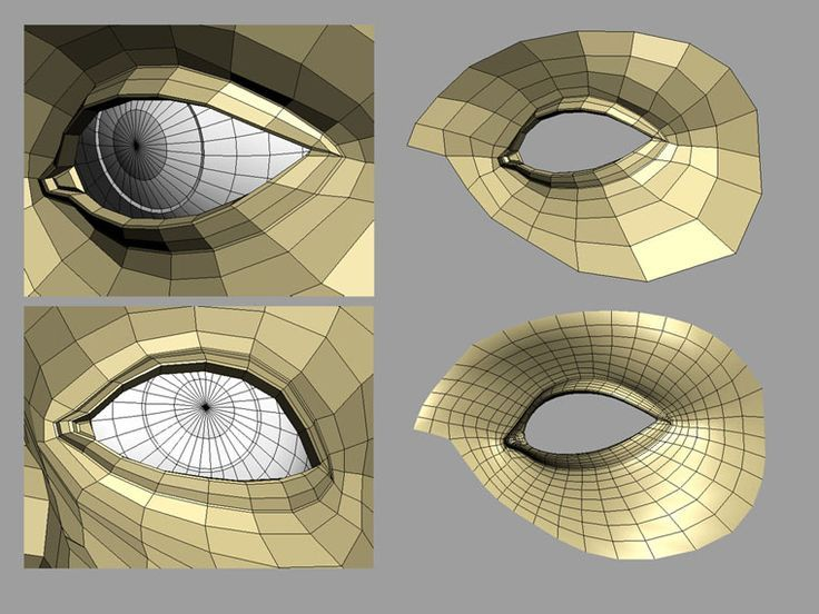 eyes topology - Google Search