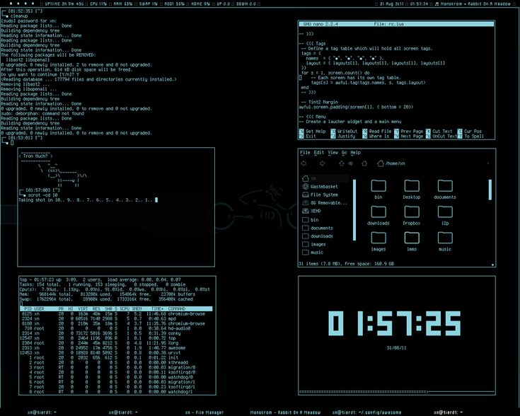 TronMinull theme in awesome wm by xeNULL