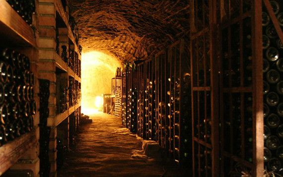 Cantina umida vino